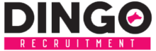 www.dingorecruitment.com